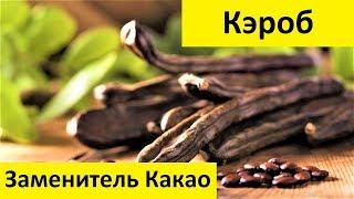 Кэроб - Лучший Заменитель Какао