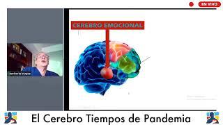 El cerebro en tiempos de Pandemia