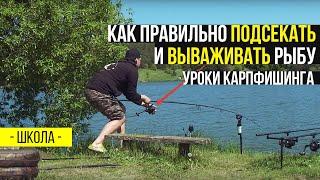 Подсечка в рыбалке это что такое