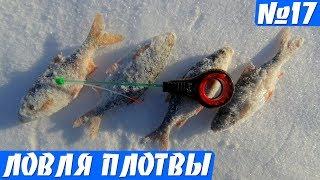 Зимняя ловля плотвы на тесто