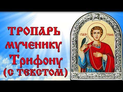 Тропарь святому мученику Трифону (аудио молитва с текстом и иконами)