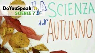 La SCIENZA dell'AUTUNNO | Da dove arrivano i colori delle foglie?
