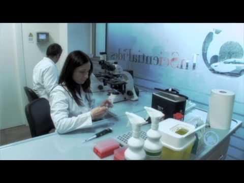 Clinica di phlebologist di battute di entrata