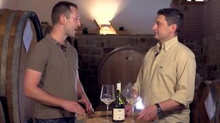 Specogna: La Degustazione del Sauvignon Blanc Duality