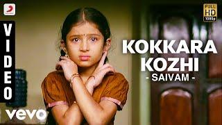 Kokkara Kozhi  Various