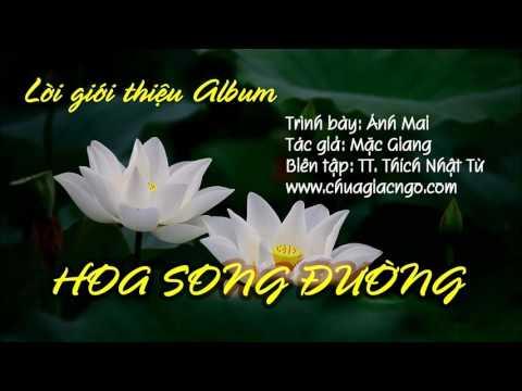 Lời giới thiệu CD Nhạc Mặc Giang 08: Hoa Song Đường