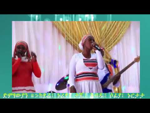 lulen hajisn new silite music 2019 ሉሌን ሀጂስ   አዲስ የስልጥኛ ሙዚቃ