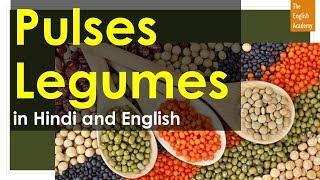 Pulses Names In English And Legumes In Hindi - दालों के नाम,  फलियां के नाम