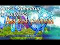 Arc Rise Fantasia: Any Speedrun World Record In 10:07:5