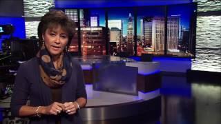 Adele Arakawa to retire in 2017