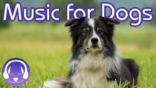 15 Hours of Soothing Dog Therapy Music - INSTANTLY Calm My Dog Down! (TESTED)