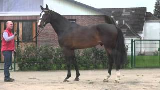 video of Quibery 3