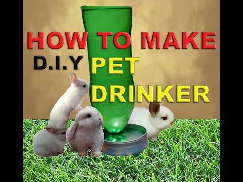 , title : 'DIY PET DRINKER |HOW TO MAKE PET DRINKER | PAANO GUMAWA NG WATER DISPENSER SA HAYOP | SIMPLE