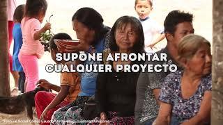Querida Amazonia: el sueño cultural del Papa