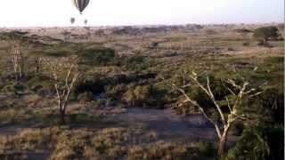 Serengeti Balloon Escape