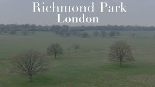 Richmond Park London - Where to fly a drone?