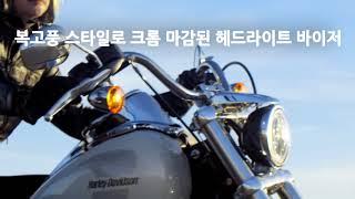 2018 로우 라이더(Low Rider®)