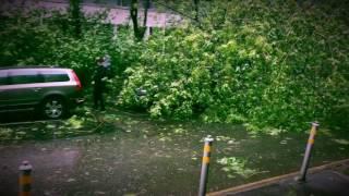 29 мая 2017 г. Ураган в Москве.