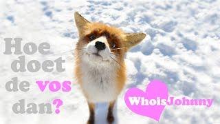 WhoisJohnny - Hoe doet de vos dan? (Parody)