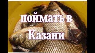 Топ мест для рыбалки в казани
