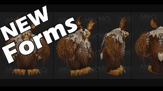 PATCH 8.1 PTR: ZANDALAR and KUL TIRAN Druid Forms !!!