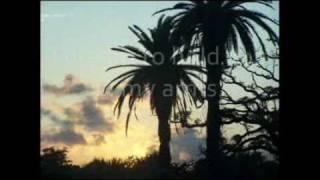 Jon Foreman - In My Arms (lyrics)