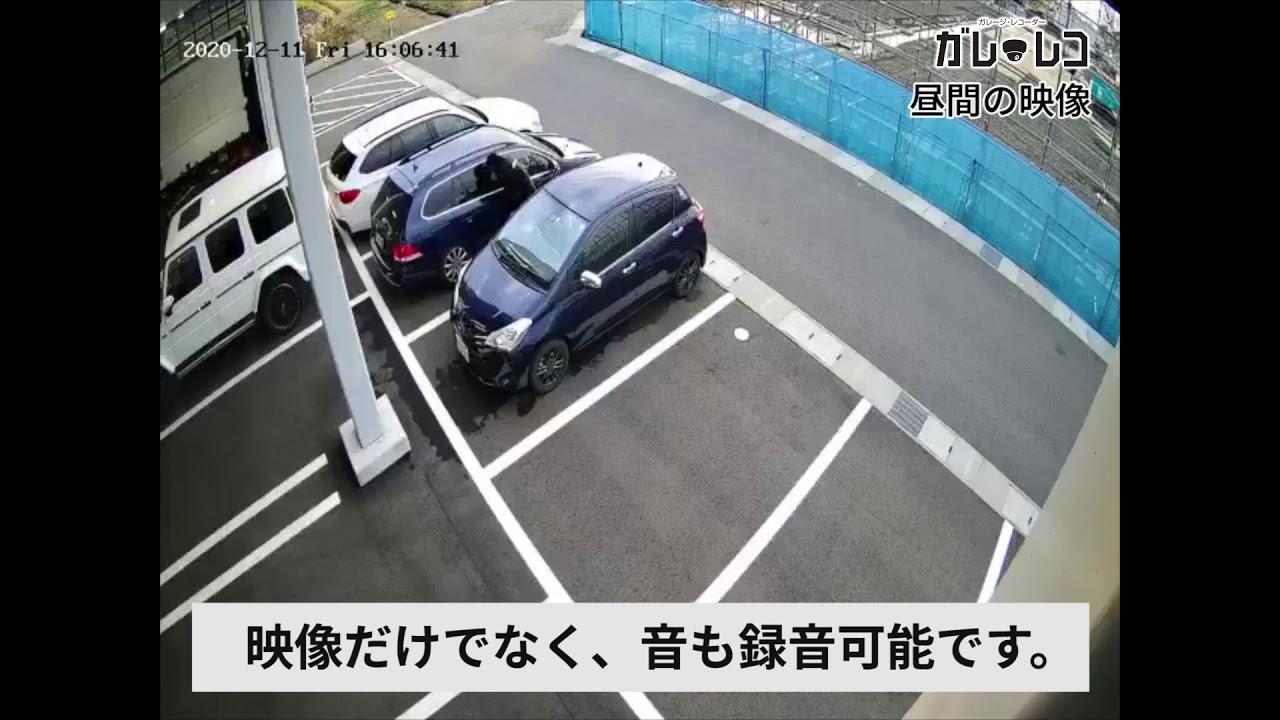 ガレ・レコ サンプル動画のサムネイル