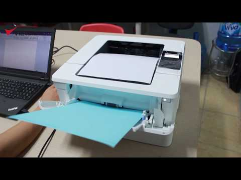 Hướng dẫn in giấy dày, giấy decal với máy in HP M404dn