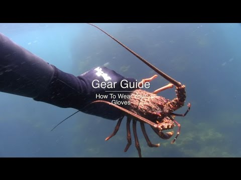 Wettie TV- 'GEAR GUIDE' How To Wear & Fit Dive Gloves