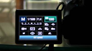DSLR Tutorial: How To Get Everything In Focus