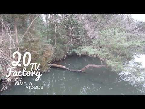 Bass Fishing Pond of Winter of Japan