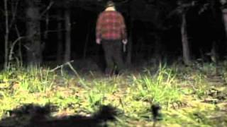 DMB Smooth Rider Music Video