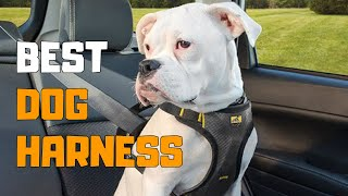 Best Dog Harness In 2020 - Top 6 Dog Harness Picks