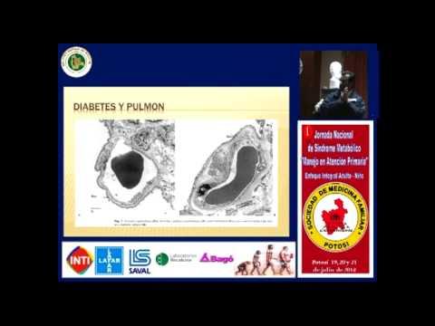 Hormiguero para los diabéticos