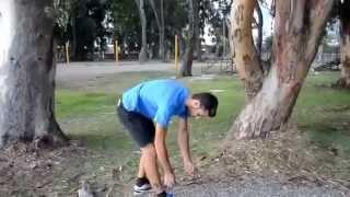Смотреть онлайн Спилил дерево невидимой бензопилой