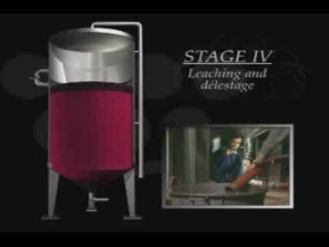Ganimede Fermentation Technology