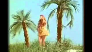 Abba Sitting In The Palmtree funny