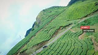 Kerala FPV Drone Freestyle   Munnar Tea Plantations   മുന്നാറിലെ തേയിലത്തോട്ടത്തിലൂടെ ഒരു പറക്കൽ