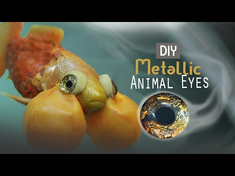 Metallic Animal Eyes DIY