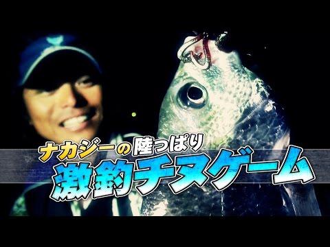 ナカジーが淀川チヌゲームをジグヘッド攻めで攻略!