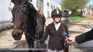 Склад збірної Дніпропетровщини з кінного спорту визначиться з 20 по 22 квітня