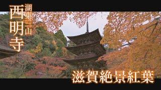 滋賀絶景紅葉2019 「西明寺」