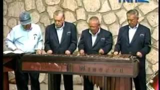Conjunto de marimba adultos Injupemp