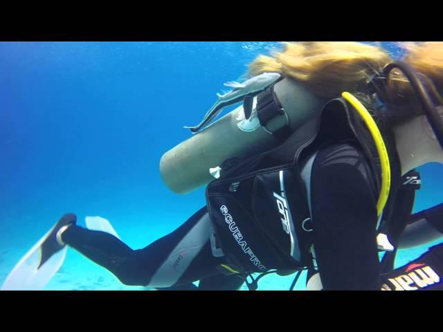 Panik diver girl