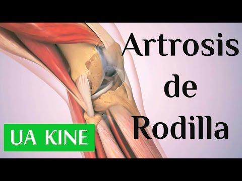 Dolor en las articulaciones y el tratamiento de hombro