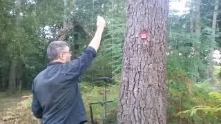 Trucs et astuces pour graisser les poulies des barres d'appeaux sans monter aux arbres.