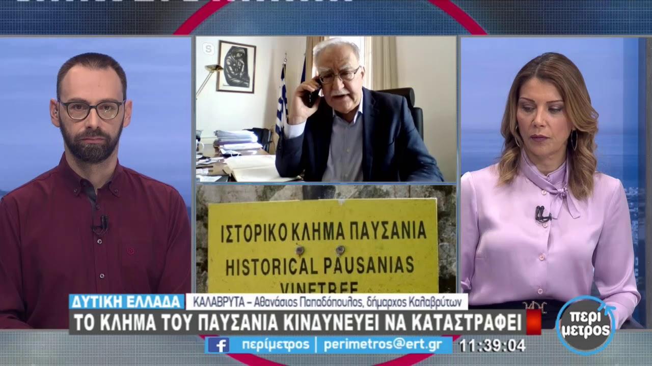 Το κλήμα του Παυσανία κινδυνεύει να καταστραφεί | 05/03/2021 | ΕΡΤ