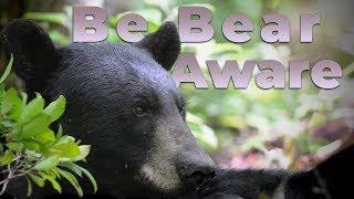 Watch Video - Be Bear Aware
