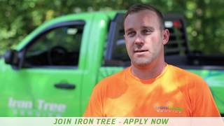 Iron Tree: Teamwork