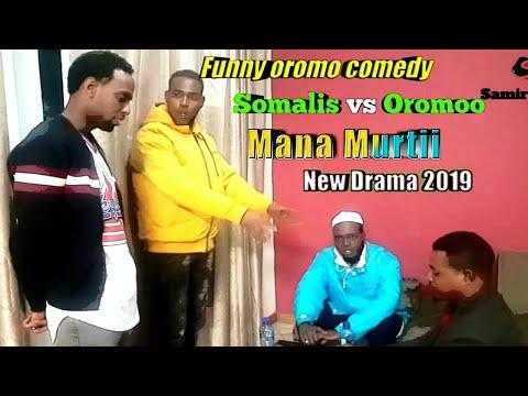 Download Oromo Comedy Video 3GP Mp4 FLV HD Mp3 Download - TubeGana Com